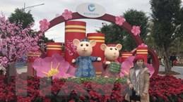 Khai mạc lễ hội hoa Xuân lớn nhất thành phố Hải Dương