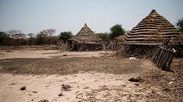 Việt Nam, Indonesia kêu gọi giải pháp hòa bình cho vấn đề Abyei