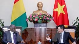 Việt Nam coi trọng phát triển quan hệ với Cộng hòa Guinea