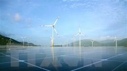 Trao quyết định chủ trương đầu tư cho 2 dự án điện gió tại Tiền Giang