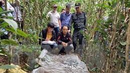 Lai Châu: Phá chuyên án cướp của, giết người tại huyện Sìn Hồ