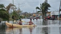 Tổng thống Mỹ yêu cầu thông qua khoản vay gần 5 tỷ USD cho Puerto Rico