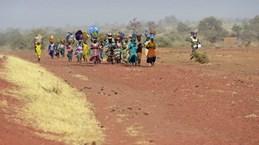 Gần 100 người thiệt mạng trong một vụ tấn công ở Mali