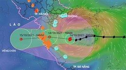 Bão số 8 đi vào vùng biển ven bờ từ Nam Định-Hà Tĩnh và suy yếu