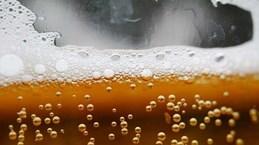 Israel sản xuất thành công bia bằng loại men cách đây hơn 5.000 năm
