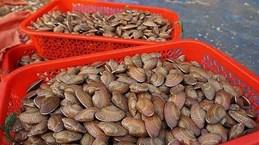 Phạt 1 Facbooker 10 triệu đồng vì đưa tin ăn sò lụa đỏ gây tử vong
