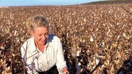 Australia tăng cường biện pháp bảo đảm an toàn sinh học
