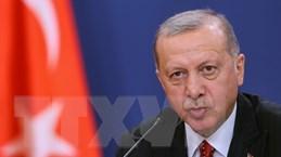 """Tổng thống Erdogan tuyên bố sẽ có những bước đi """"cần thiết"""" tại Syria"""