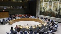 Hội đồng bảo an Liên hợp quốc dỡ bỏ trừng phạt đối với Eritrea