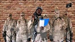 Một thành phố của Niger bị cô lập sau vụ tấn công của Boko Haram