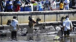 Tàu Nhật Bản gây sự cố tràn dầu ở Mauritius đã bị vỡ đôi