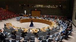 HĐBA thông qua các nghị quyết liên quan đến Mali, Liban và Somalia