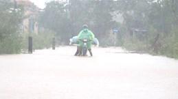 Quảng Trị nước sông đang lên, di dời hàng trăm hộ dân tránh lũ