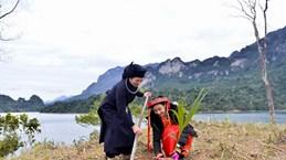 Trồng mới 1 triệu cây xanh khôi phục rừng đầu nguồn trên Cao nguyên đá