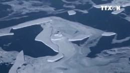[Video] Nam Cực không ngừng tan chảy, nước biển sẽ dâng cao 57m