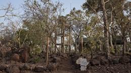Benin: Hai du khách người Pháp mất tích tại Vườn quốc gia Pendjari
