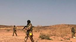 Ít nhất 10 nhân viên cứu trợ nhân đạo bị bắt cóc ở Tây Nam Niger