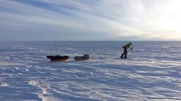 Nhà thám hiểm đầu tiên độc hành xuyên Nam Cực không cần trợ giúp
