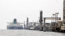 Saudi Arabia ngừng bơm dầu thô, giá dầu thế giới tăng hơn 1%