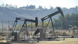 80% năng lượng tiêu thụ của Mỹ là từ nhiên liệu hóa thạch