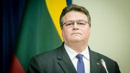 Ngoại trưởng Litva tự cách ly sau chuyến thăm của Tổng thống Pháp