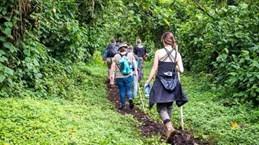 Uganda: Các tay súng bắt cóc du khách Mỹ, đòi 500.000 USD tiền chuộc
