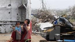 Bão Fani tàn phá Ấn Độ và Bangladesh, gần 80 người thiệt mạng