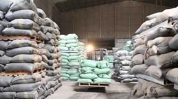 Thủ tướng quyết định cấp bổ sung 6.500 tấn gạo cho 4 tỉnh miền Trung