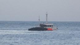 Tàu cá Bình Định bị chìm khi tránh bão số 9, 12 ngư dân mất tích