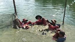 Bà Rịa-Vũng Tàu cam kết hỗ trợ tiêu thụ sản phẩm nông sản và thủy sản