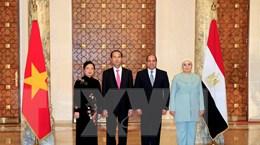 Chủ tịch nước kết thúc chuyến thăm cấp Nhà nước đến Ethiopia và Ai Cập