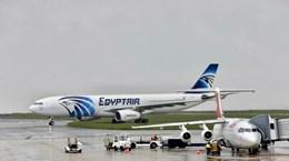 Hãng hàng không EgyptAir chuẩn bị nối lại đường bay tới Qatar