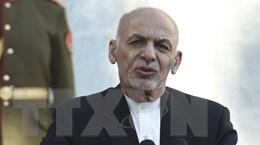 Taliban phủ nhận thông tin yêu cầu Tổng thống Afghanistan từ chức