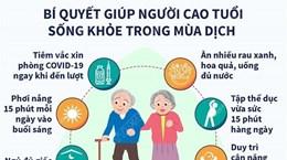 [Infographics] Bí quyết giúp người cao tuổi sống khỏe trong mùa dịch