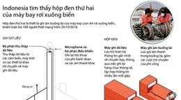 [Infographics] Indonesia tìm thấy hộp đen thứ hai của máy bay Lion Air