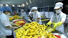 Động lực tăng trưởng kinh tế Việt Nam: Những con số 'biết nói'
