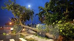 Những hình ảnh về thiệt hại ban đầu do bão số 9 tại Đà Nẵng