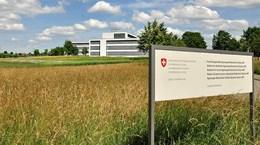 Câu chuyện dài kỳ về lệnh cấm thực phẩm biến đổi gene của Thụy Sĩ