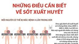 [Infographics] Những thông tin cần biết về bệnh sốt xuất huyết