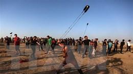Đụng độ với binh sĩ Israel làm 12 người Palestine thương vong
