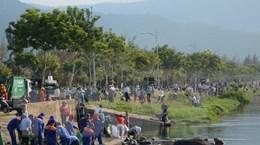 Hơn 2.000 người tham gia làm sạch môi trường biển Đà Nẵng
