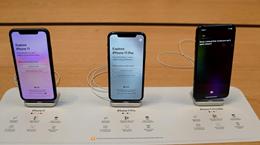 Nikkei: Apple tăng sản lượng iPhone 11 do nhu cầu 'tốt hơn mong đợi'
