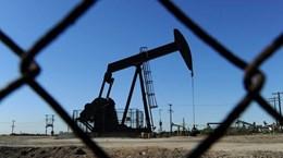 Giá dầu thế giới giảm khoảng 2% phiên giao dịch 13/5