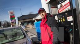Giá dầu thế giới tiếp tục phục hồi nhờ sự yếu đi của đồng USD