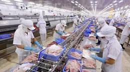CPTPP và EVFTA: Cơ hội để thủy sản Việt Nam phát triển bền vững