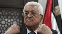 Abbas: PA sẽ cấp hộ chiếu Nhà nước Palestine trong năm 2016