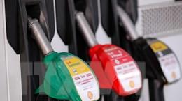 Giá dầu tăng trong phiên 14/5 khi dự trữ dầu thô của Mỹ bất ngờ giảm