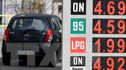 IEA: Nhu cầu dầu thế giới đang hướng tới mức giảm kỷ lục trong 2020