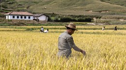 Triều Tiên kêu gọi các nước dỡ bỏ lệnh trừng phạt kinh tế