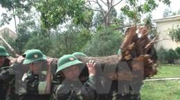 Kỷ niệm 54 năm ngày truyền thống Bộ đội Biên phòng Quảng Nam